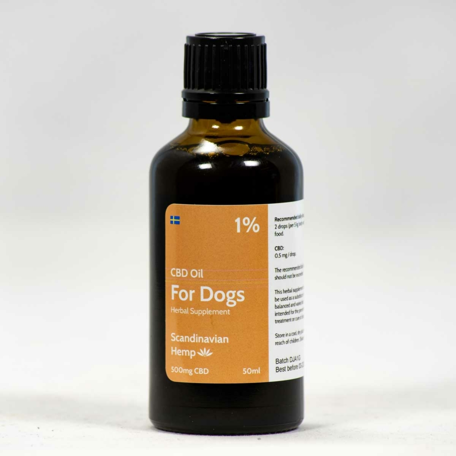 CBD-oil-for-dogs-1%